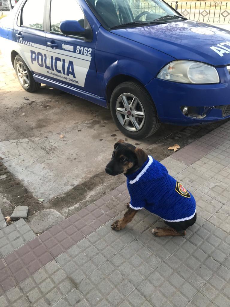 Un nuevo integrante en las filas policiales